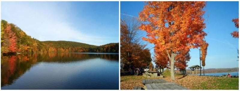 Fall Colours Quebec