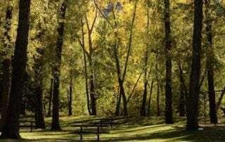 Best public parks in Calgary
