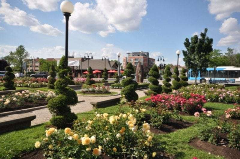 Montreal Francophone city