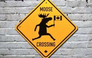 Moose crossing road signs