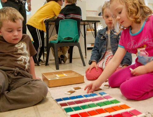 Montessori Schools in Toronto